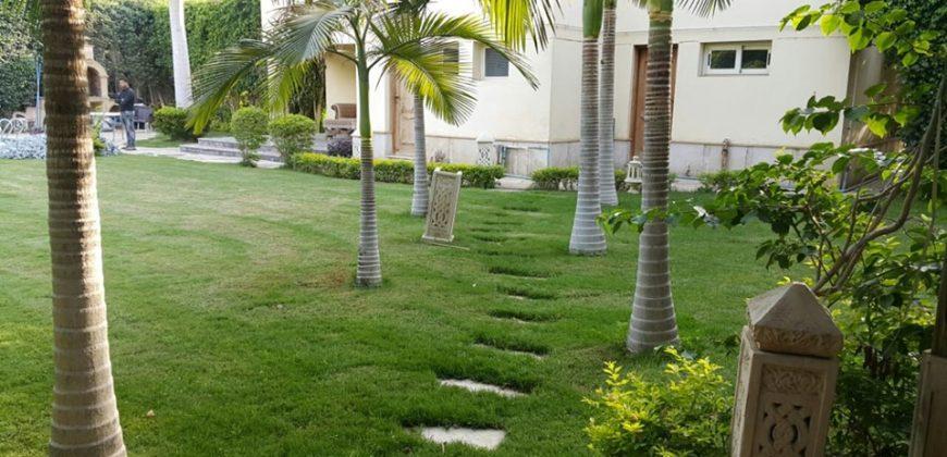 Rehab city villa 350